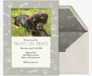 Pet Prints Invitation